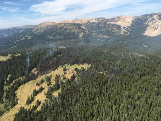 "This aerial shot shows how the Bacon Rind Fire has not yet spread into the green meadow adjacent to the flames. Fire conditions in this section of the Custer Gallatin National Forest were deemed ""moderate"" on Sunday, July 22."