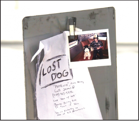 This sign, the kindness of a stranger and a pair of dirty drawers—the lengths dog owners go to retrieve our furry friends.