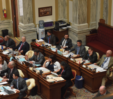 The House in action: plenty of heated debate occurred in the past week regarding bills linked to sage grouse protection and concealed carry for legislators.