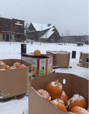 Hundreds of pounds of food are collected for the food bank each year on account of the pumpkin giveaway, thanks to community partners and sponsors Visit Big Sky, Roxy's Market, The Big Sky Community Organization, The Big Sky Real Estate Co., and the Big Sky Chamber of Commerce. PHOTO COURTESY SWEET BUNS CATERING LLC