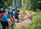 SWMMBA volunteers remove a substantial fallen log. PHOTO COURTESY MELISSA CRONIN